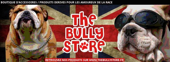 the bully store